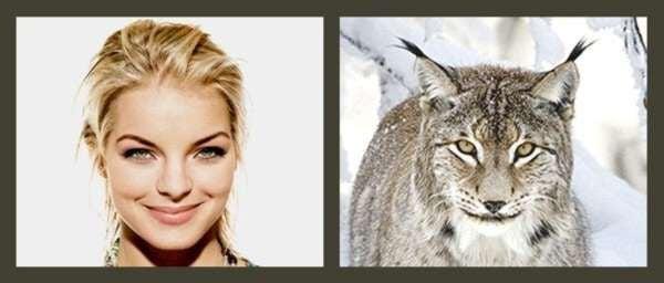 Celebrities -Animal-1