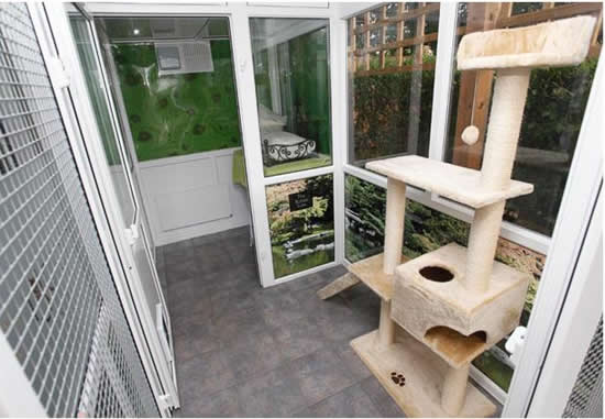 cat hotel 13 Unusual Luxury Cat Hotel