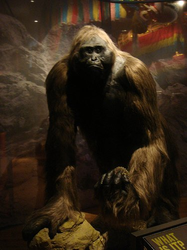 Gigantopithecus 2 Forgotten Monsters