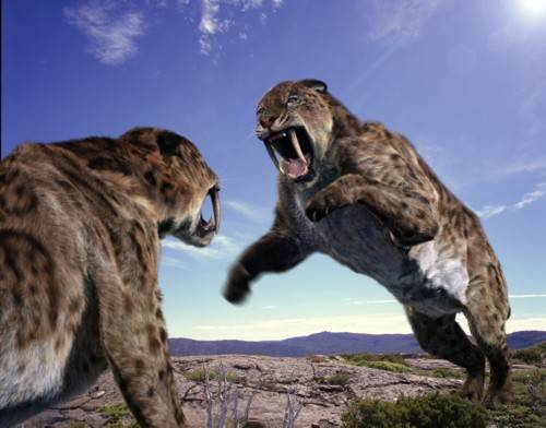 Smilodon 2 Forgotten Monsters