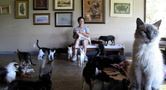 Lady-With-700-Cats-2