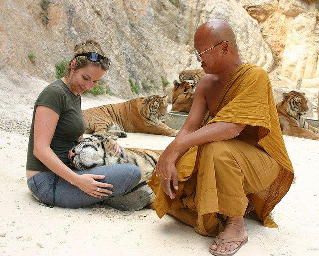 A woman caresses a tiger
