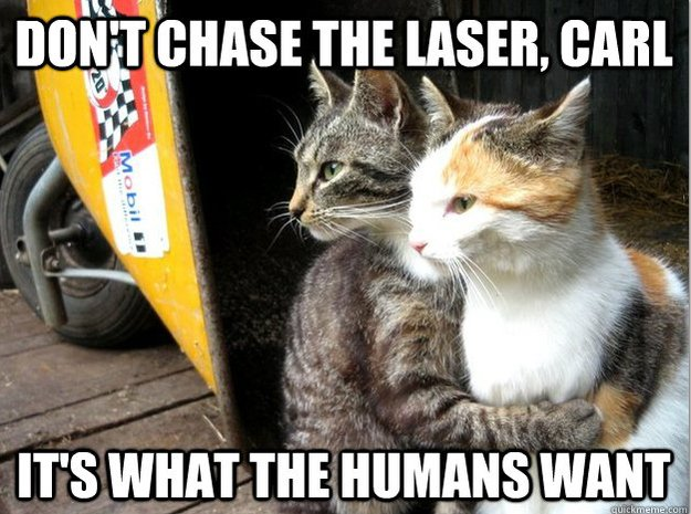Funny Animal Memes : Ridiculously funny animal memes for 2013 animals zone