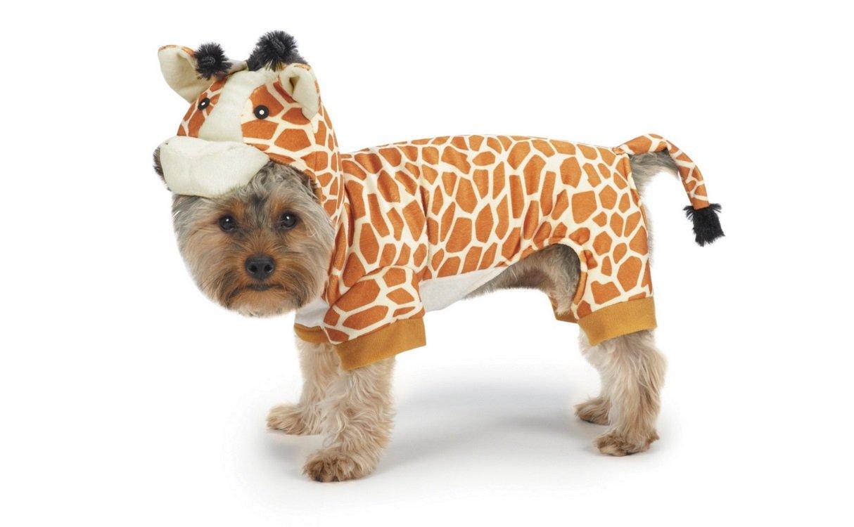 Giraffe Costume | Animals Zone