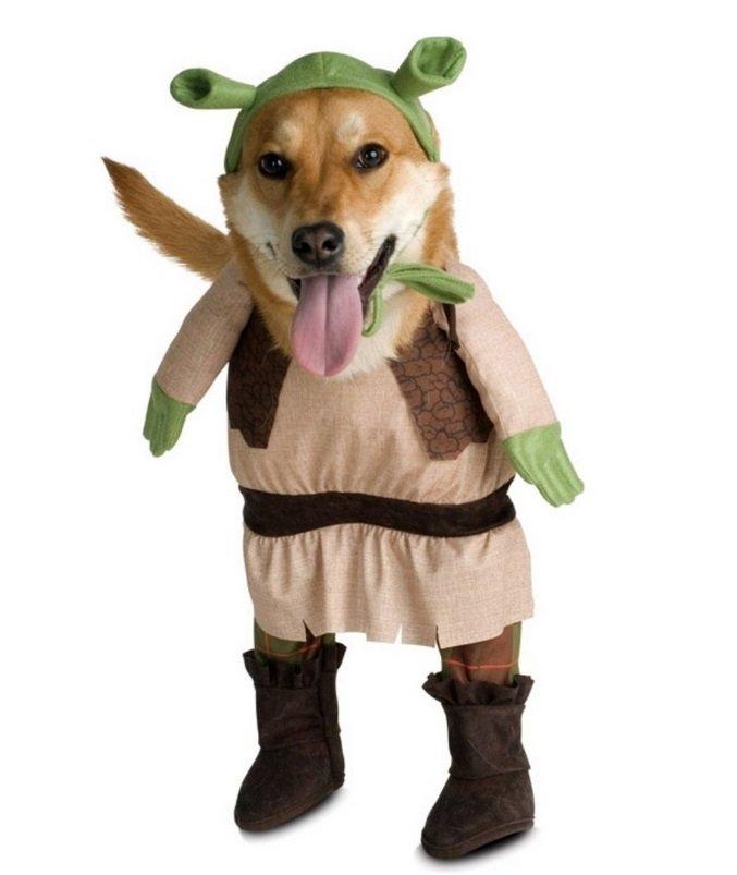 Shrek Costume | Animals Zone