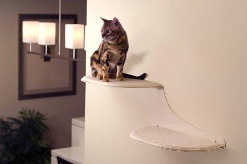 Cat Cloud Cat Shelves | Animals Zone