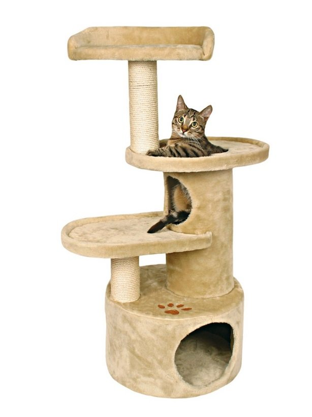 Cat Tree | Animals Zone