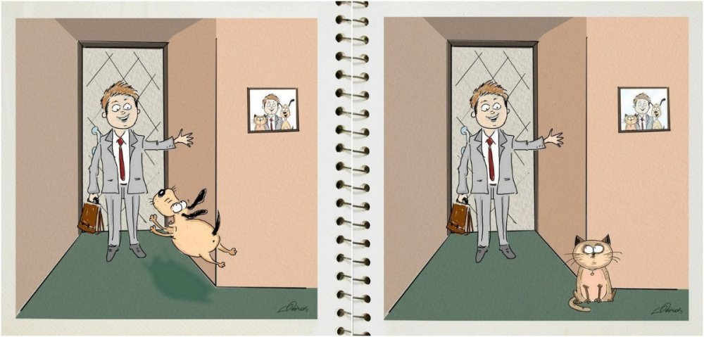 Cats Vs. Dogs: Behavioral differences in cute Illustrations | Animals Zone