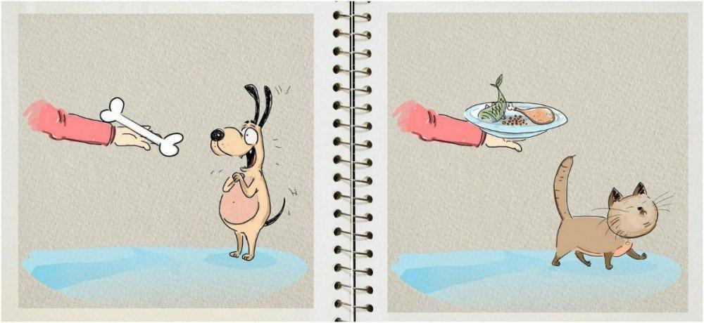 Dogs Vs. Cats: So true! :) | Animals Zone