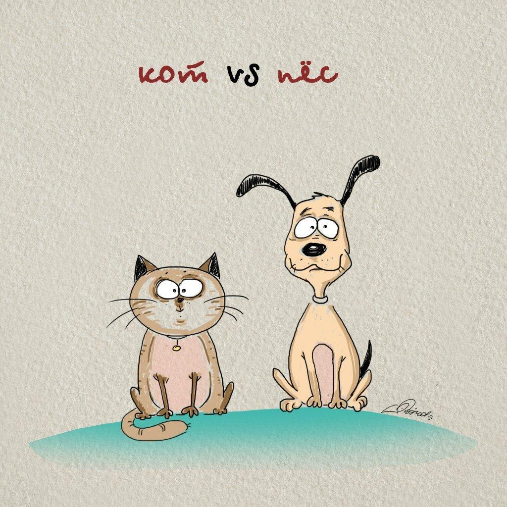 Cats Vs. Dogs  | Animals Zone