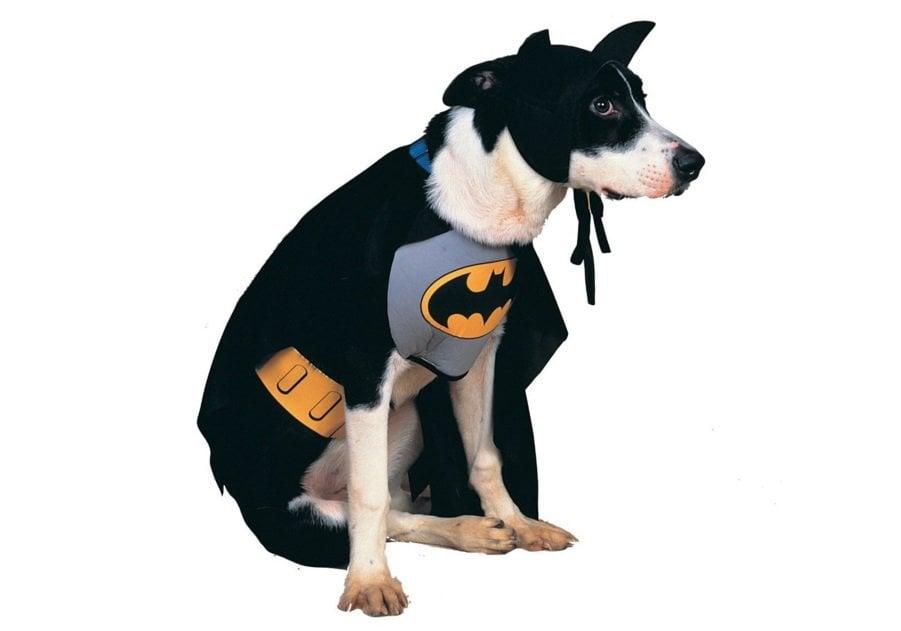 Classic Batman | Animals Zone