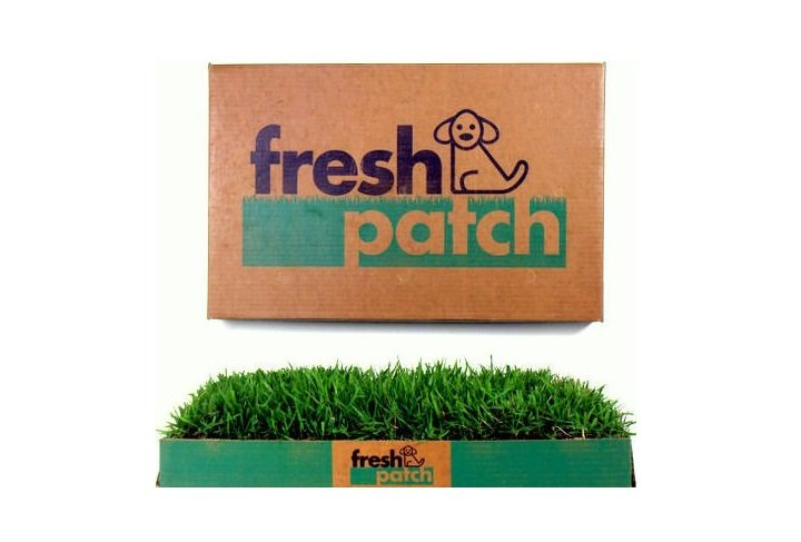Fresh Patch Disposable Dog Potty with REAL Grass | Animals Zone