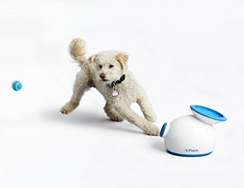 Holiday Gift Guide: iFetch | Animals Zone