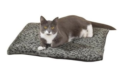 Holiday Gift Guide: Thermal Cat Mat | Animals Zone