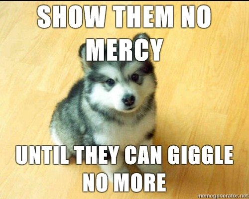 fierry cute puppy meme