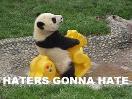 haters gonna hate panda meme