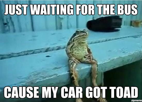 just waiting for the bus cause my car got toad sitting frog