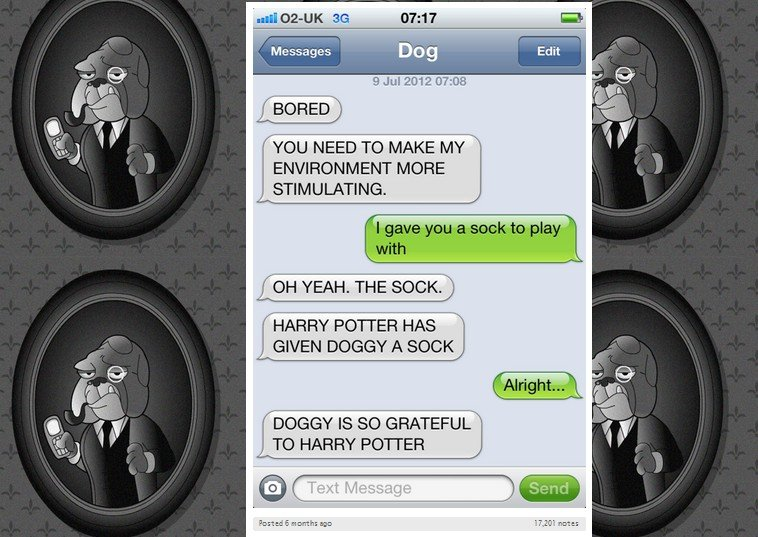 sarcastic dog watches harry potter