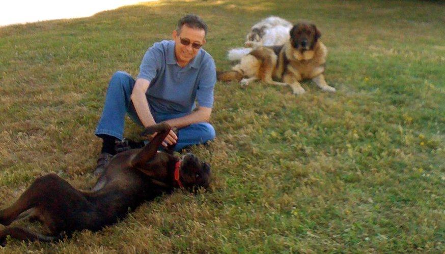 Ramon Bartomeus jugando con perros de El Cau Amic