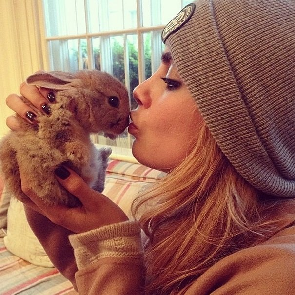 Cara Delevingne and her adorable bunny Cecil Delevingne | Animals Zone
