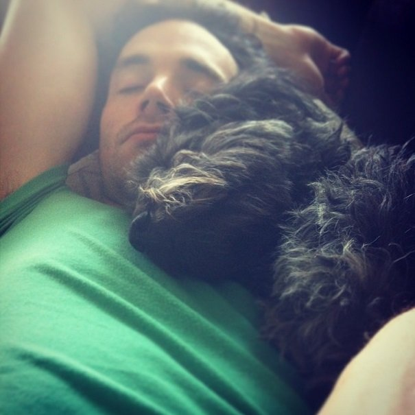 Ian Harding and his labradoodle   Animals Zone
