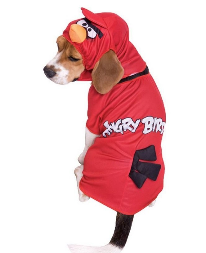 Angry Birds Costume | Animals Zone