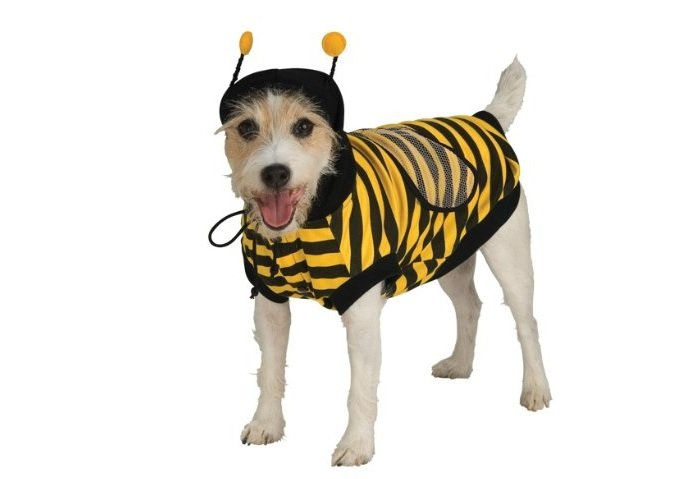 Bee Costume | Animals Zone