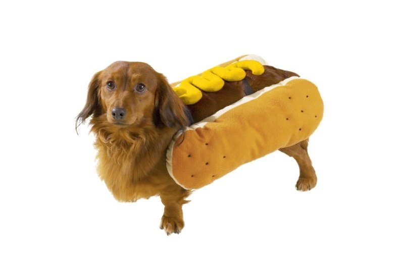 Hot Dog Costume | Animals Zone