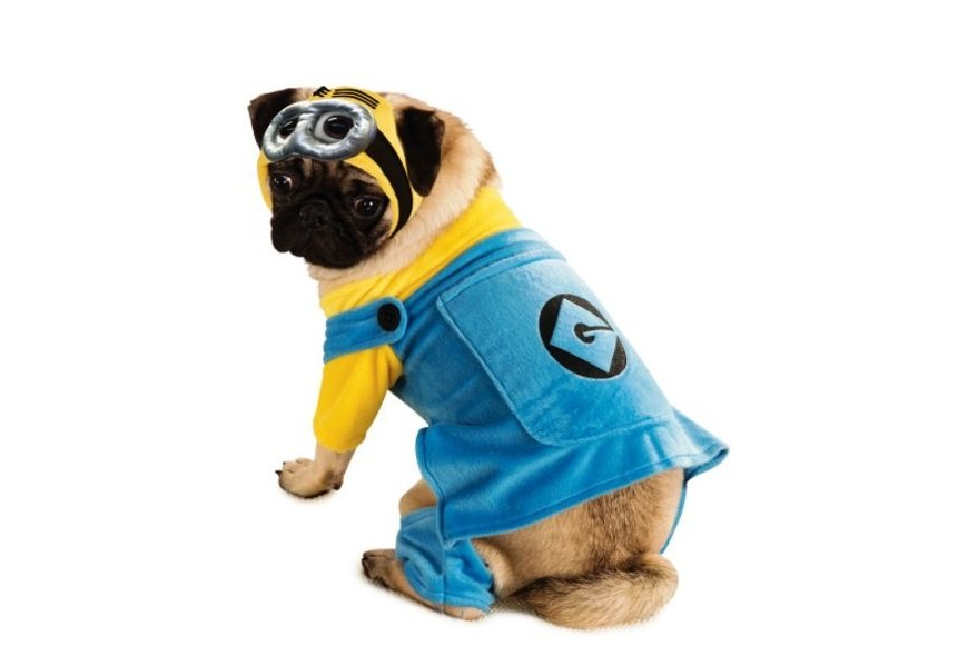 Minion Costume | Animals Zone