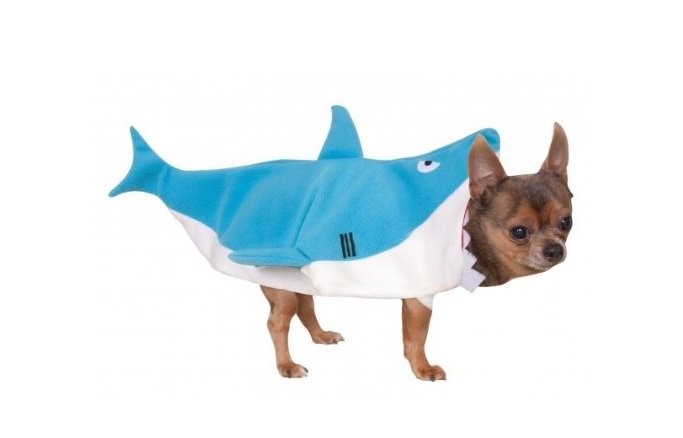 Shark Pet Costume | Animals Zone