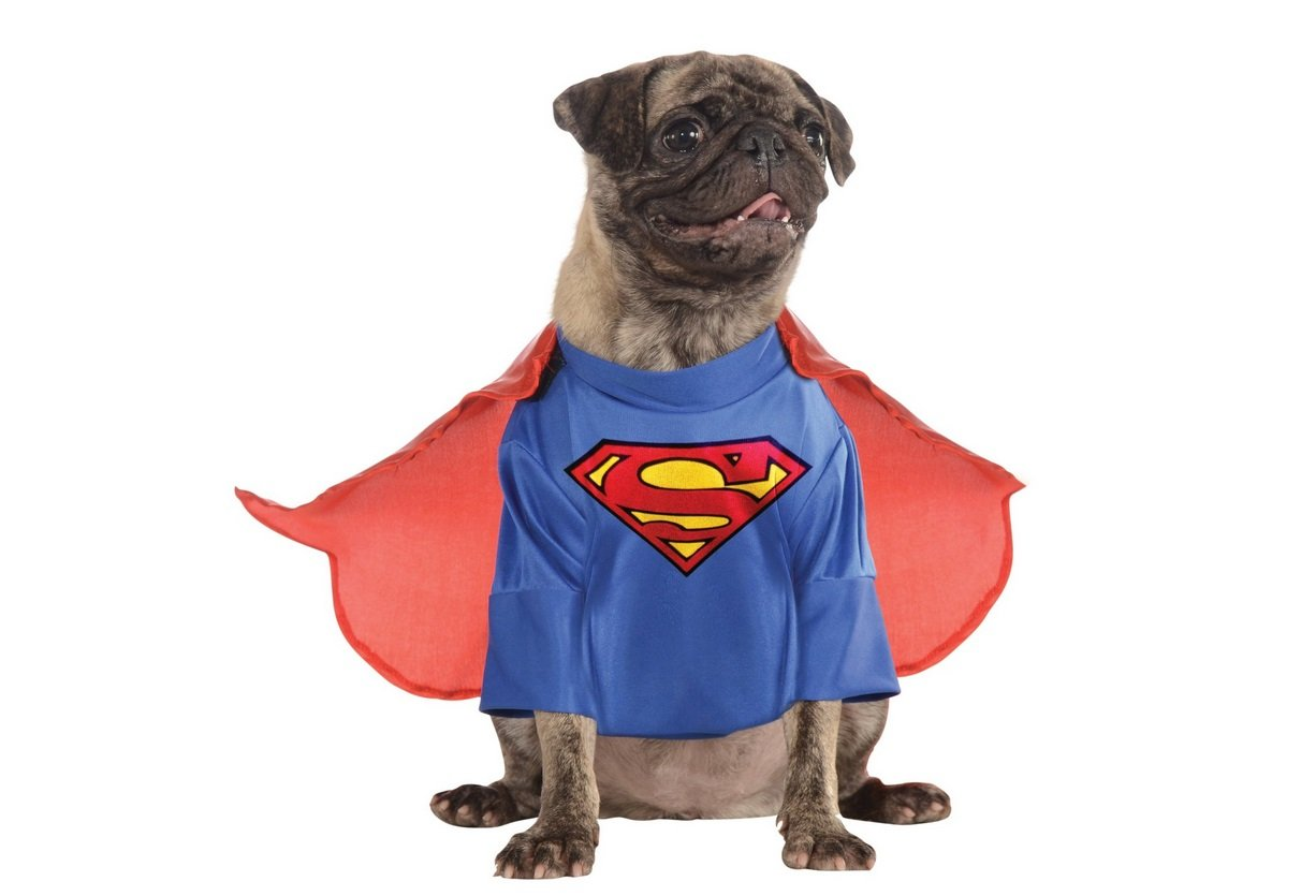 Superman Dog Costume | Animals Zone