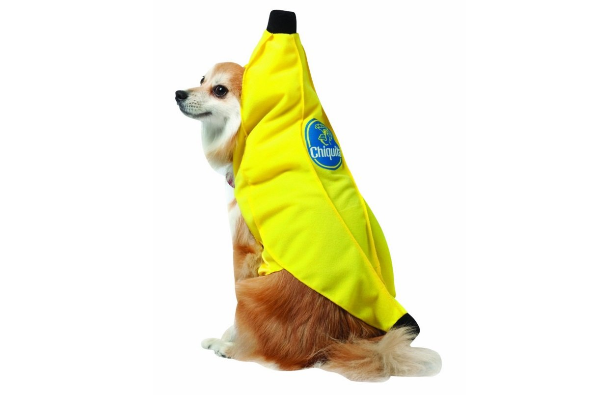 Chiquita Banana | Animals Zone