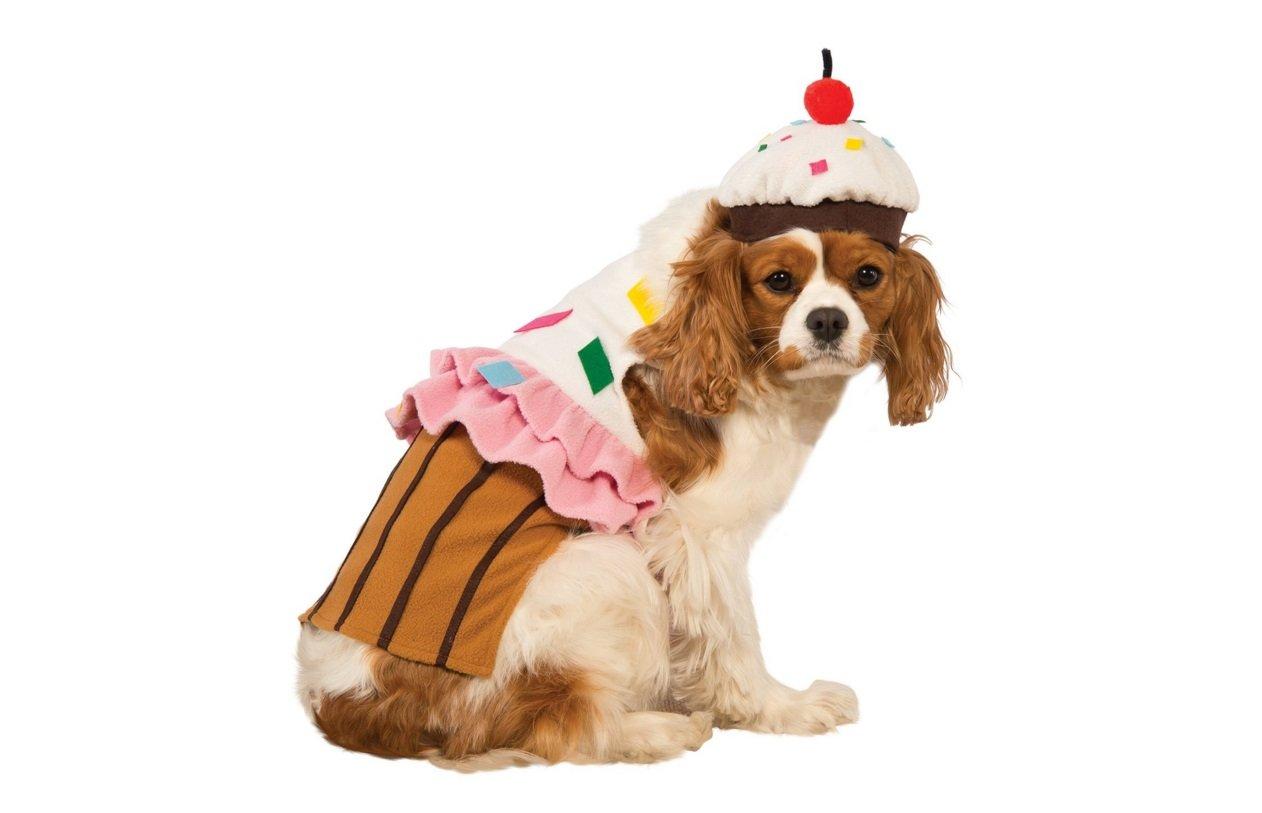 Cupcake Sweetie | Animals Zone