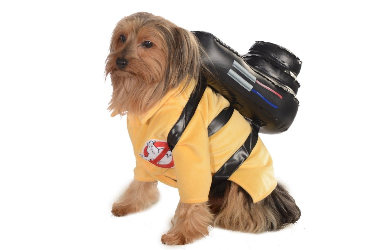 That's a real Ghostbuster! | Animals Zone