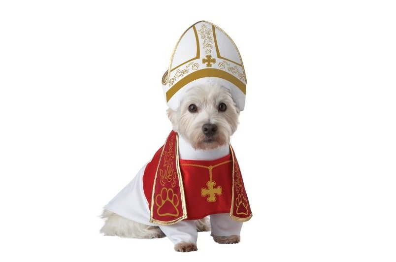 Holy Hound Dog Costume | Animals Zone
