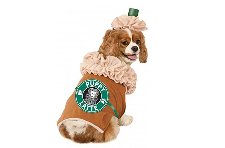 Iced Coffee Costume for Halloween | Animals Zone
