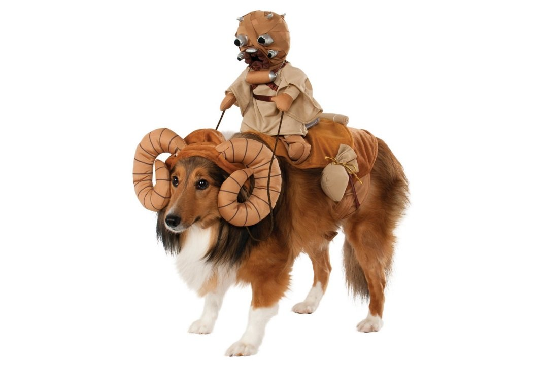 Star Wars Bantha | Animals Zone