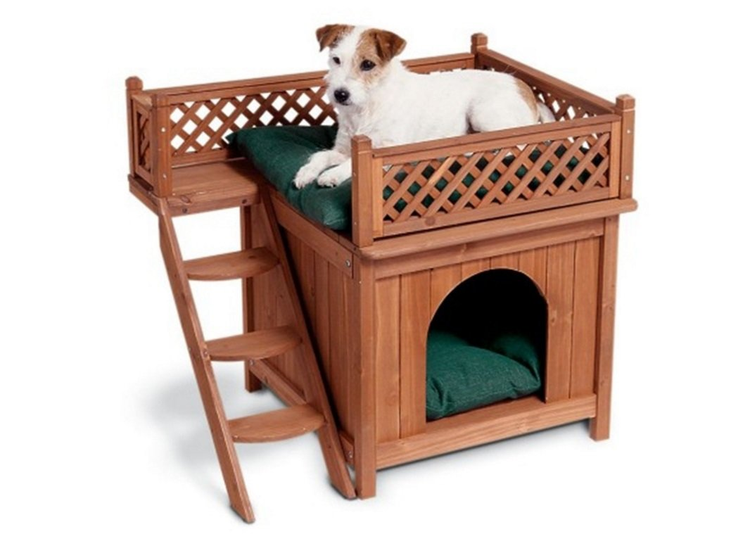 Merry Pet Wood Room with a View Pet House | Animals Zone
