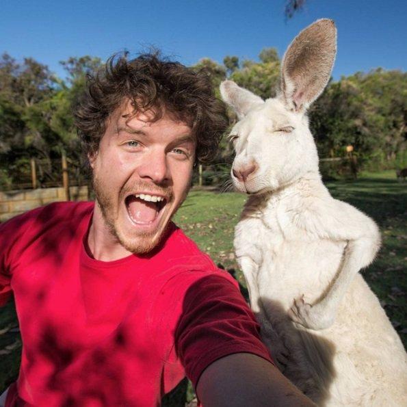 He has taken amazing selfies with around 30 animal species! | Animals Zone