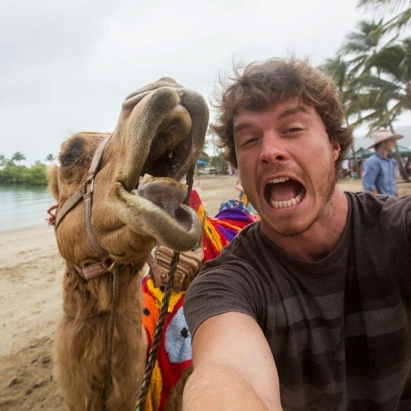 This Man Takes Hilarious Wildlife Selfies | Animals Zone