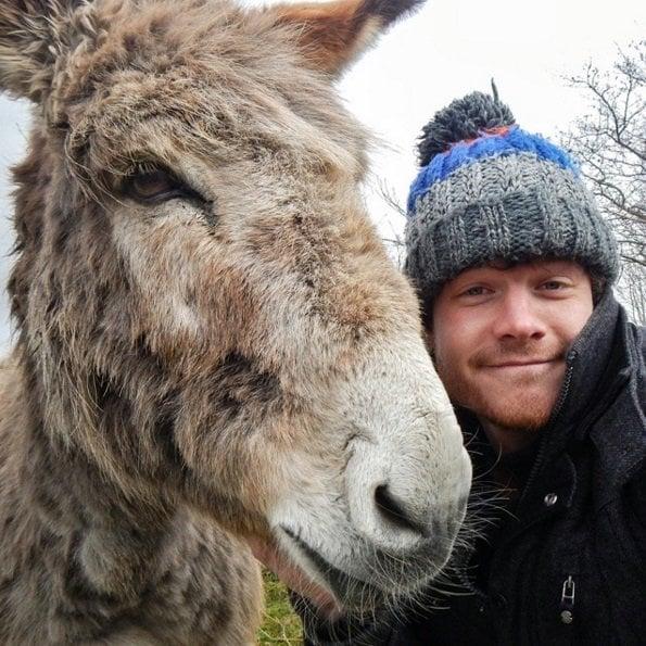 Life on the farm | Animals Zone
