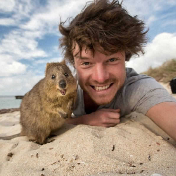 Best Selfie EVER | Animals Zone