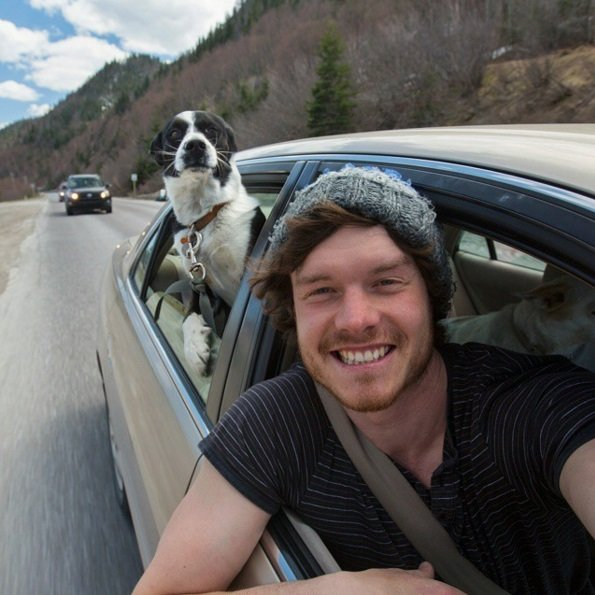 On the Road Again | Animals Zone